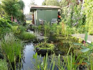 Green, sportive experience in rural Amsterdam - Amsterdam vacation rentals