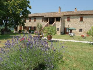 Agriturismo Podere Luchiano. Typical Umbrian count - Amelia vacation rentals