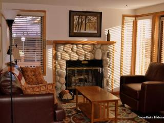 Ski in/SKi Out, 2 bedroom, 2 bath condo - Breckenridge vacation rentals