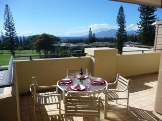 1 bedroom Apartment with A/C in Kapalua - Kapalua vacation rentals