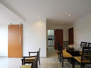 Comfortable 3 bedroom Sao Paulo Apartment with Internet Access - Sao Paulo vacation rentals