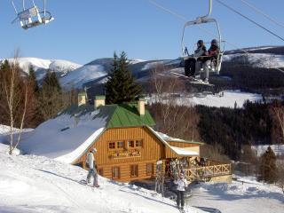 Pension Alenka on the slope Labska-Giantmountains - Vrchlabi vacation rentals