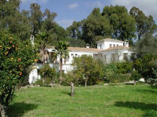 Finca San Ambrosio -La Torre - Terrace. Pool, WiFi - Vejer vacation rentals