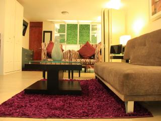 AMAZING STUDIO ON 1ST FLOOR - Mexico City vacation rentals
