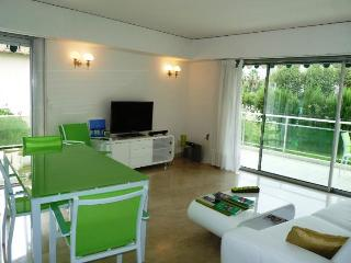 Velasquez Vert Wonderful 3 Bedroom Vacation Home with a Terrace - Cannes vacation rentals