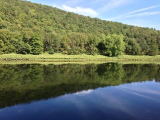 Guest House on the Scenic Delaware River - Catskills vacation rentals