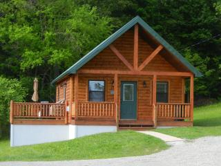 Antler Ridge Cabin in Southeastern Ohio - Malta vacation rentals