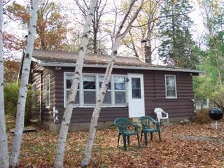 Lake Side - Island Lake Chain ~ New Auburn ~ Log Cabin - New Auburn - rentals