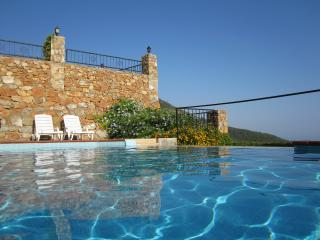 Villa (10 p.) with private pool and amazing view! - Kargicak vacation rentals