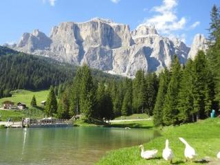 Charming Condo with Internet Access and A/C - Campitello di Fassa vacation rentals