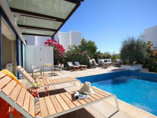 Lovely Villa with Internet Access and Television - Protaras vacation rentals