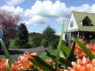 Runciman Berries and Emus B&B - Auckland vacation rentals