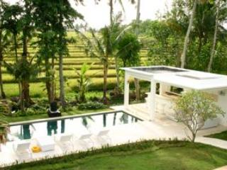 Contemporary Rice Paddy Villa - Canggu vacation rentals