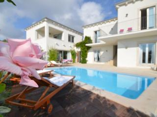 Beautifull 4 bedroom villa with private pool - Rakalj vacation rentals
