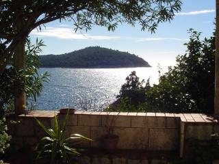 Apartment Adriatic Star  A 1- the finest location - Dubrovnik vacation rentals