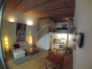 Cool metropolitan lifestyle loft with bicycles - Florence vacation rentals