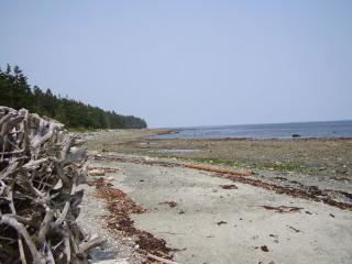 Nice 1 bedroom Cabin in Comox - Comox vacation rentals