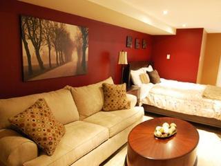 Comfortable Large Studio Unit #1 ~ RA42992 - Manhattan vacation rentals