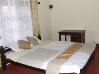 On Kilimanjaro! Bed & Breakfast Rooms for rent - Moshi vacation rentals