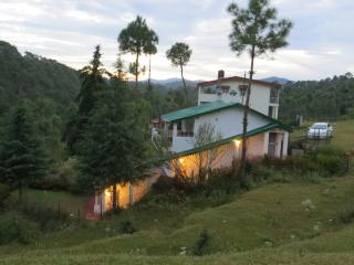 Devdar Lodge, at Foothill City, Dwarson, Ranlkhet - Bhimtal vacation rentals