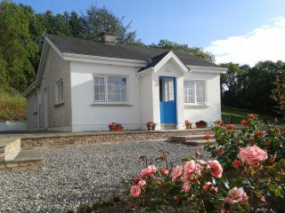 Cosy fisherman's cottage beside Blackwater River - County Waterford vacation rentals