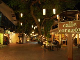 APARTMENT IN THE HEART OF PLAYA DEL CARMEN, MEXICO - Playa del Carmen vacation rentals