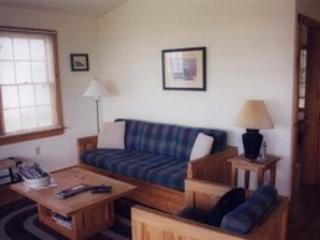 Shore Cottage with Ocean and Lighthouse Views - Steuben vacation rentals