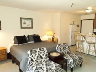 Elkhorn Village Condo #2037 - Economical Studio - Sun Valley vacation rentals