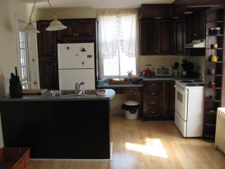 Fully furnished elegant 6 bedroom heritage home - Saint John's vacation rentals