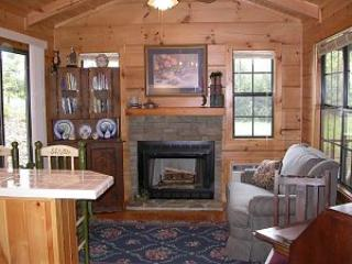 Luxury log cabin near beautiful Lake James, NC - Image 1 - Nebo - rentals