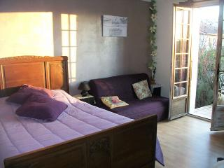 bed and breakfast in the countryside - Villeneuve-de-Marc vacation rentals