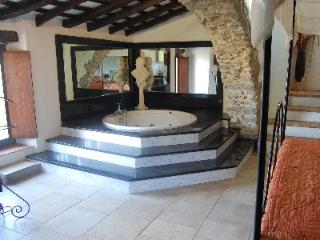 LUXURY CHATEAU ALL YEAR AROUND - Province of Girona vacation rentals
