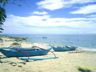 Munting Buhangin (Small Beach) Apartment. - Occidental Mindoro Province vacation rentals