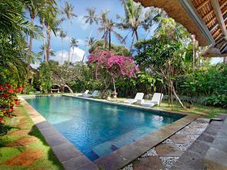Fantasyland holiday villa near the beach. - Sanur vacation rentals