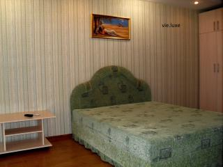 luxery apartment in the centre of city - Zaporizhzhya vacation rentals