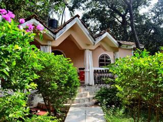 Villa Hanuman - Vagator vacation rentals