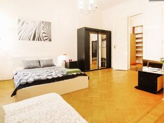 Historical OLD-TOWN Between Basilica/Chain Bridge - Central Hungary vacation rentals