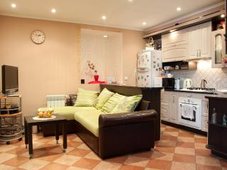 Cheap apartment in the city center - Ukraine vacation rentals