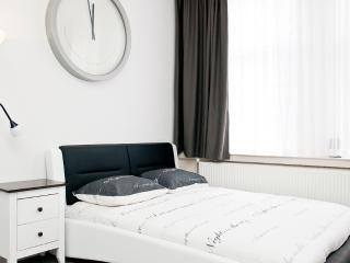 Rotterdam Centrum Fully Furnished - Rotterdam vacation rentals