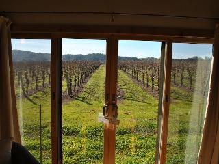 Soda Rock Winery Vineyard Suite - Healdsburg vacation rentals