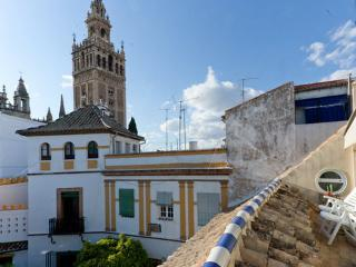 [302] Exclusive loft with views on the Giralda - Seville vacation rentals