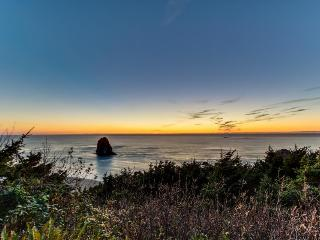 The Blue Pelican: Private Hot Tub & Ocean Views - Arch Cape vacation rentals