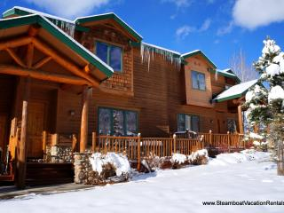 Cozy 3 bedroom House in Steamboat Springs - Steamboat Springs vacation rentals