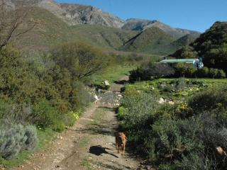 Dew Cottage, Mountain Farm Retreat - Montagu vacation rentals