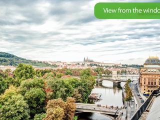 Castle And Charles Bridge View Apartment - Riga vacation rentals