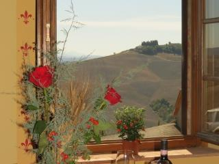 CR102Siena - Beautiful Tuscan countryside, 12 Km from Siena - Siena vacation rentals
