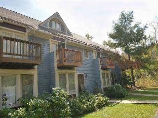 Beautiful ski in/ ski out townhome - McHenry vacation rentals