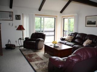 **Freshly painted!!!! Camelbeach, CBK, Zip Lining, Outlets, Family fun - Tannersville vacation rentals