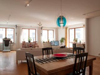 Malmö city centre. 140 sqm. Free WiFi! - Skåne vacation rentals
