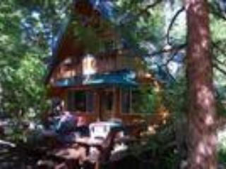 Homewood cabin...ski home for lunch. - Homewood vacation rentals
